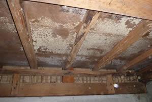 床下地材の著しいカビ腐朽